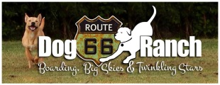 Route 66 Dog Ranch LLC